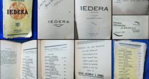 Carte veche- Iedera-Grazia Deledda-1928. Marimi-20_13cm-252pgn, coperta uzata.