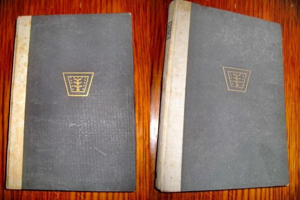 7874-Th. Kappstein-Religiile Lumii 2 volume-editie veche 1920-1922.
