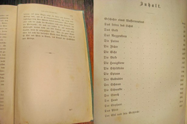 Set 2 volume Biografia Stiintelor Naturii-A.W.Grabe-Stuttgart 1877-78.