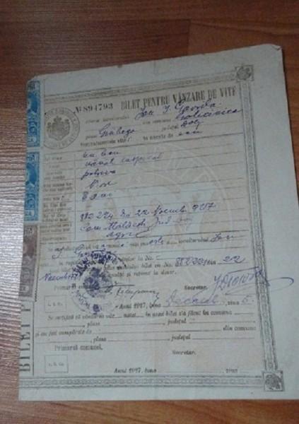document  vechi - bilet pt vanzare de vite 1927