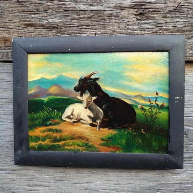 tablou cu capre